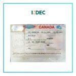 CHUẨN BỊ HỒ SƠ DU HỌC CANADA CÙNG INDEC, VISA VỀ CHỈ TRONG 5 NGÀY