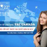 Khí hậu các tỉnh bang tại Canada – Điều cần biết trước khi quyết định du học