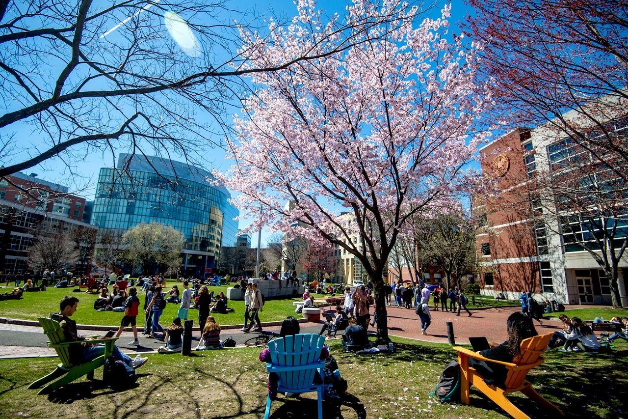 Northeastern - Một trong các trường đại học được nhiều du học sinh lựa chọn tại Mỹ