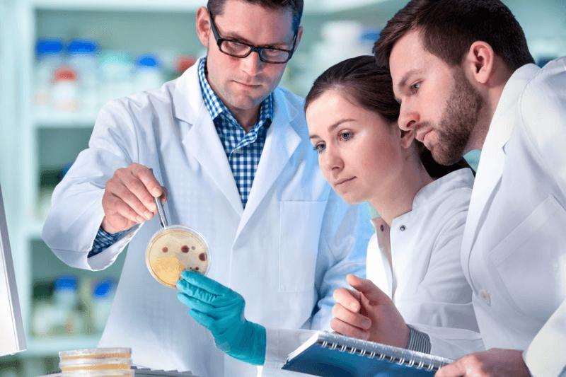 du học ba lan ngành y