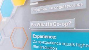 co-op là gì